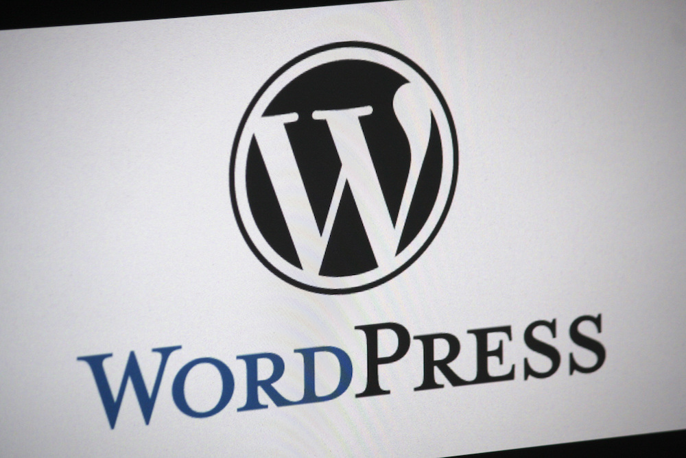 WordPress logo on a screen