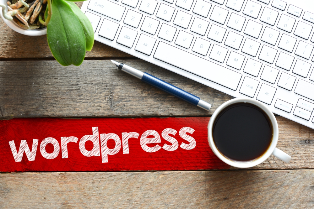 Why Use A Wordpress Support Service